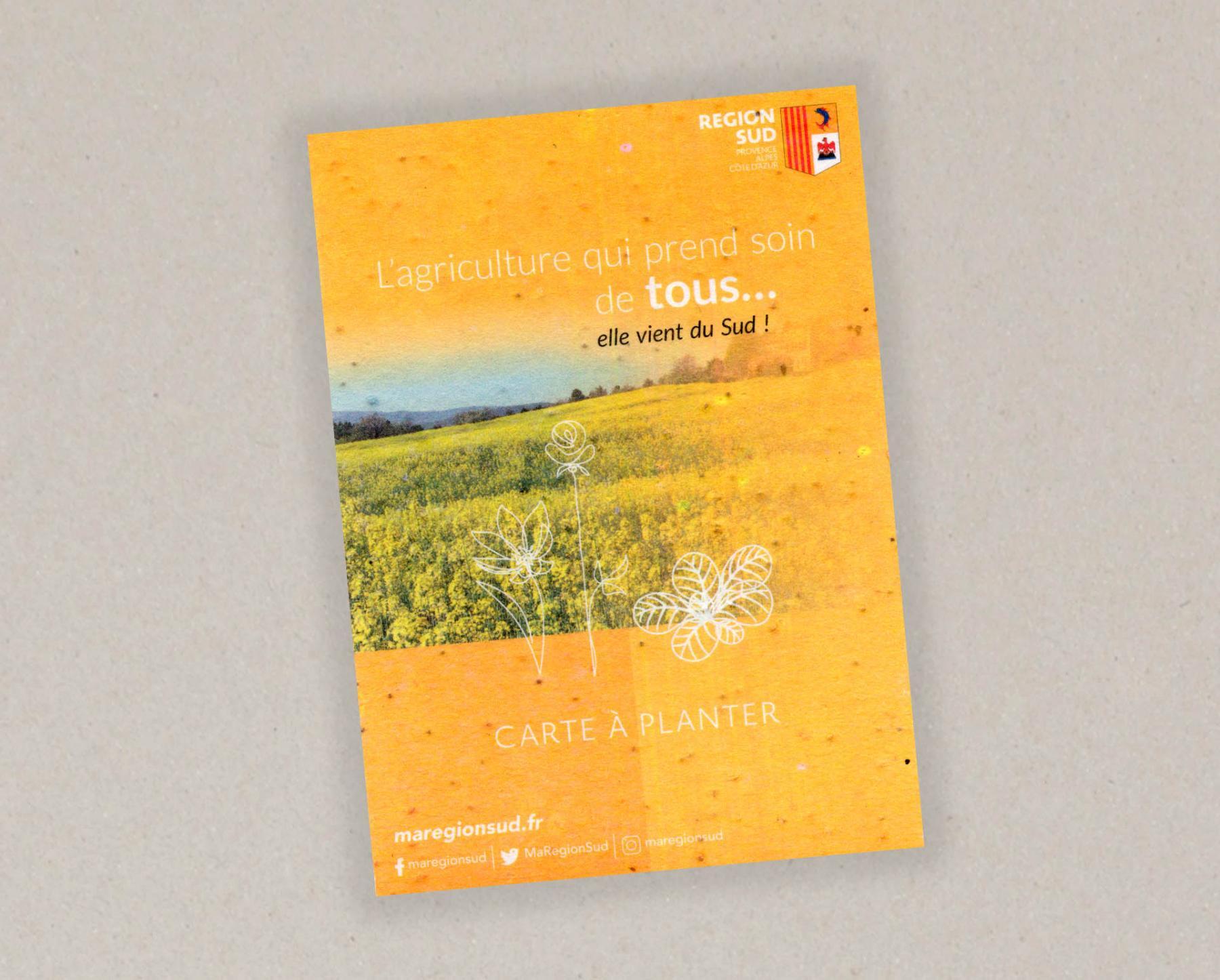 Papel con semillas realizado para Region Sud cara A